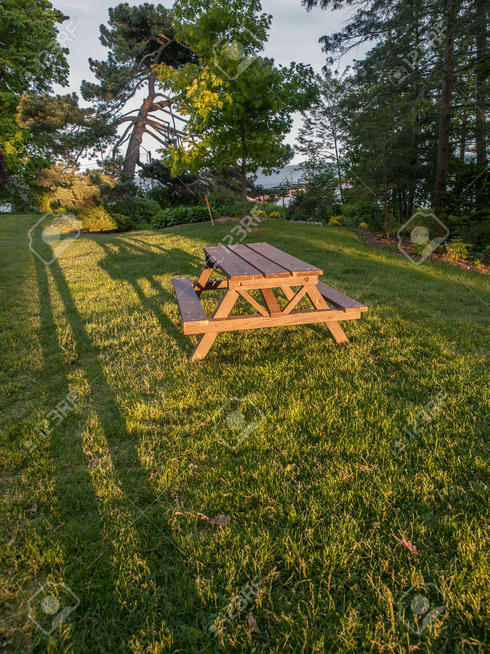 Tavolo Oakville Ontario Picnic Table At Sunset With Long Shadows On Green Grass In A