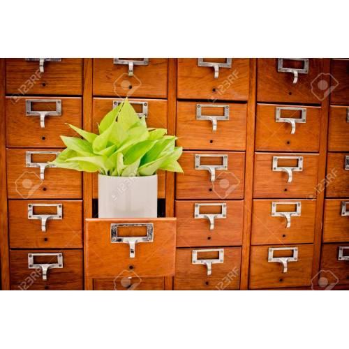 Medium Crop Of Card Catalog Cabinet