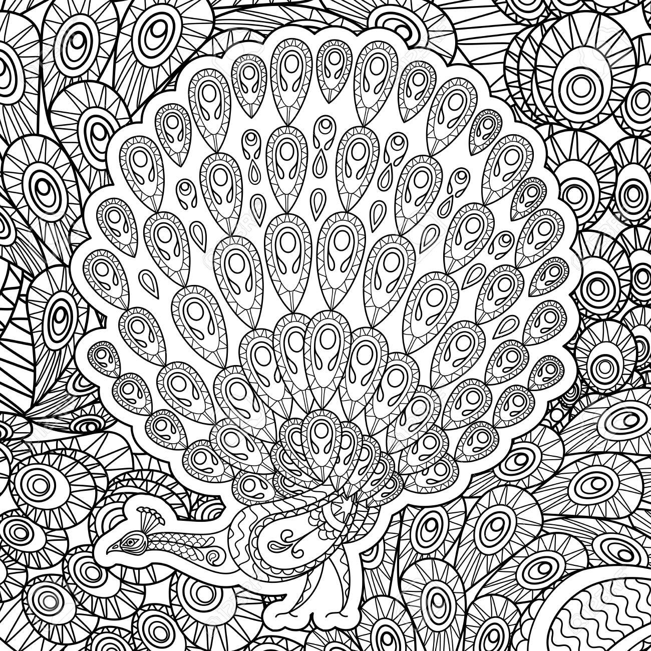 Ausmalbilder Erwachsene Pfau Anti Stress Coloring Book Beautiful