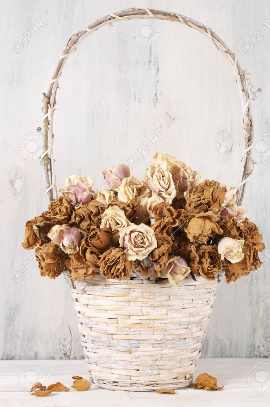 Holzjalousien Weiß Dried Roses In Wicker Basket On Rustic White Wood Background Shabby Chic Interior Decor