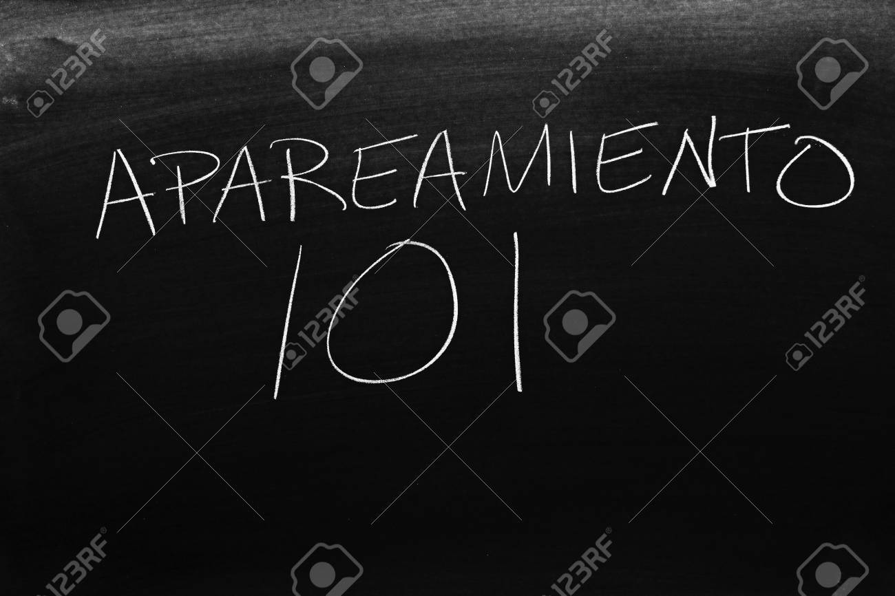 Apareamiento Videos The Words Apareamiento 101 On A Blackboard In Chalk Translation