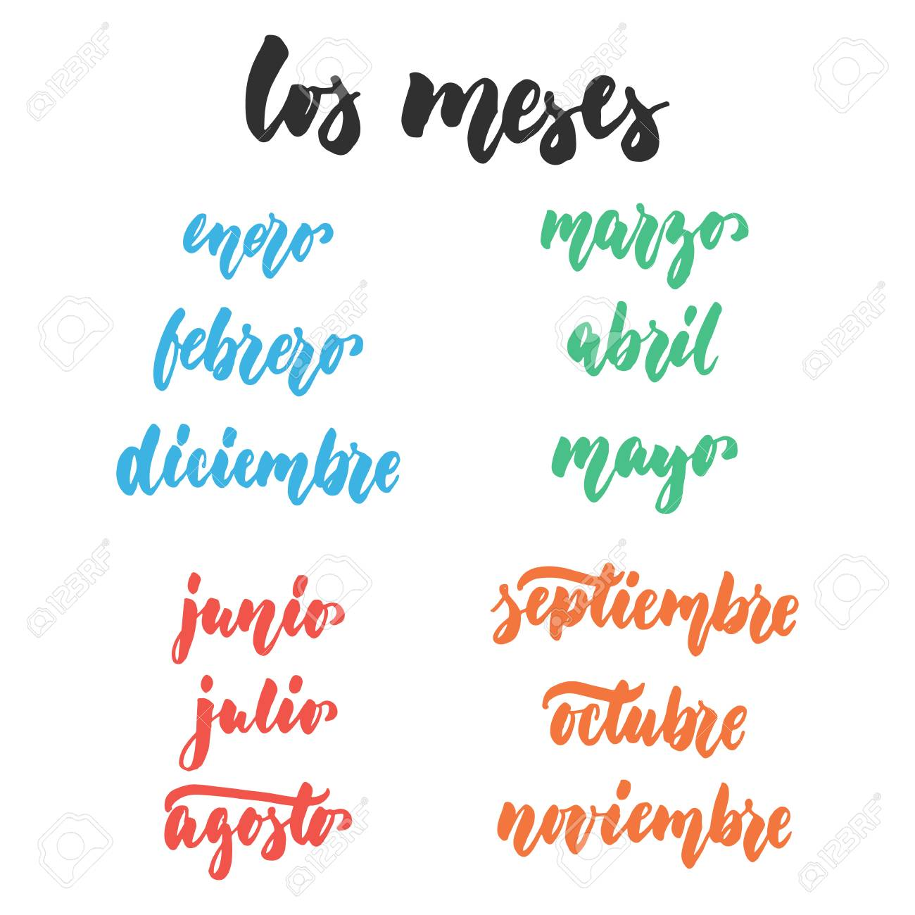 Fotos De Dos Meses Los Meses Months In Spanish Hand Drawn Latin Lettering Quote
