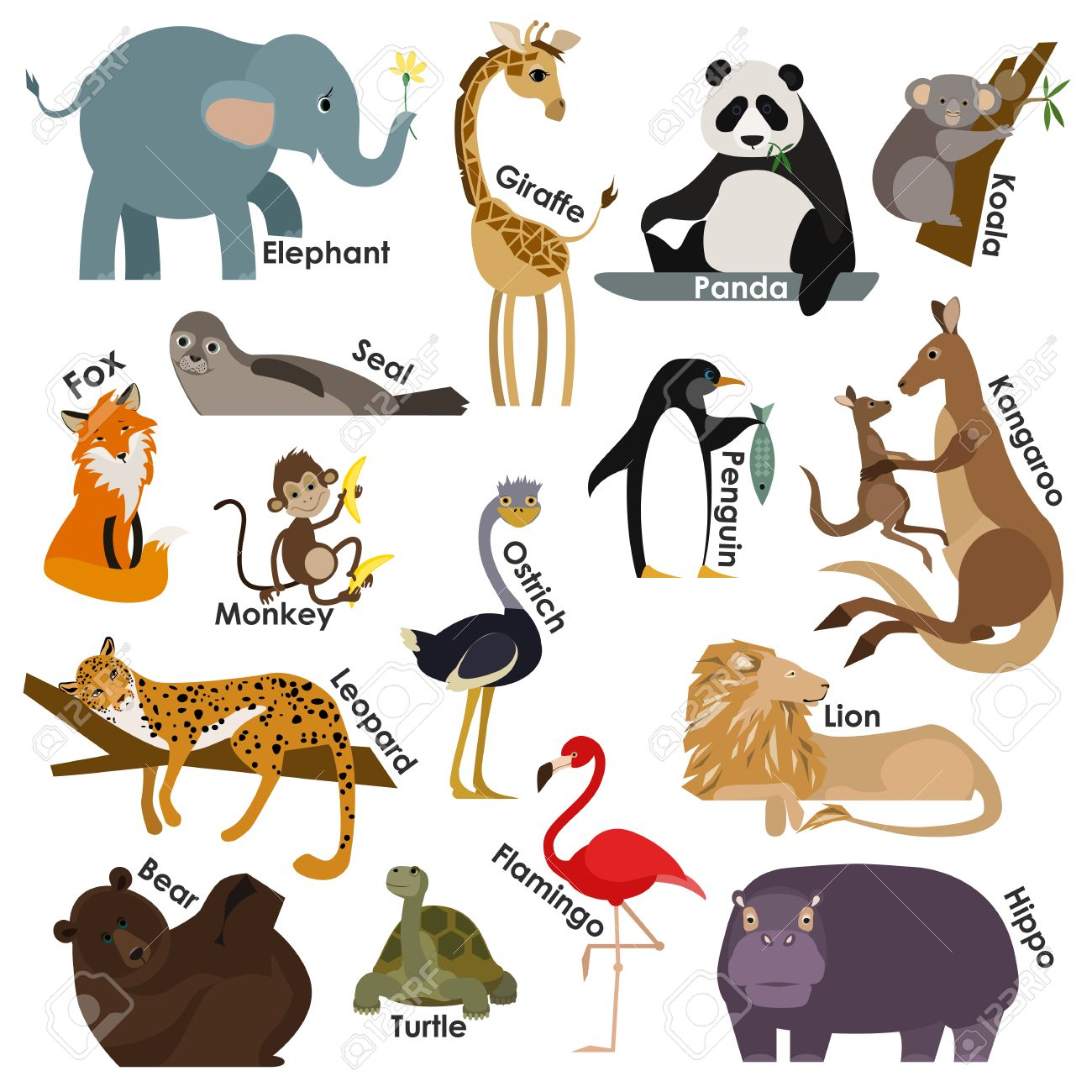 Animal Design Set Of Zoo Cartoon Animals Flat Style Design Icons Set Vector