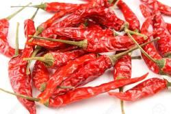Small Of Thai Chili Pepper