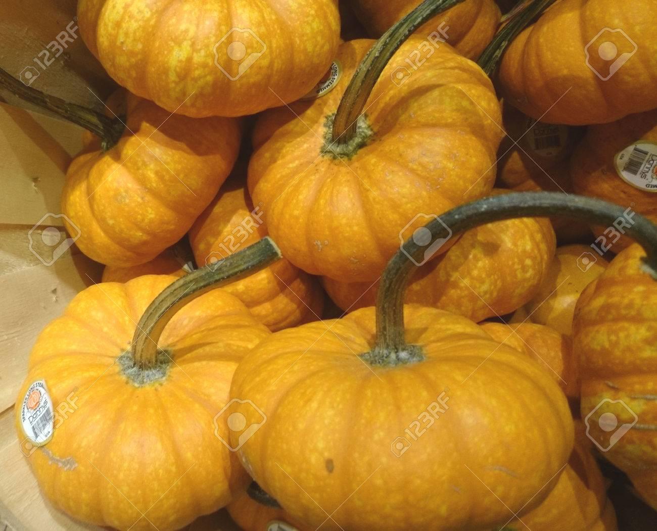 Halloween Kürbis Sorte Kürbissorten Für Sie