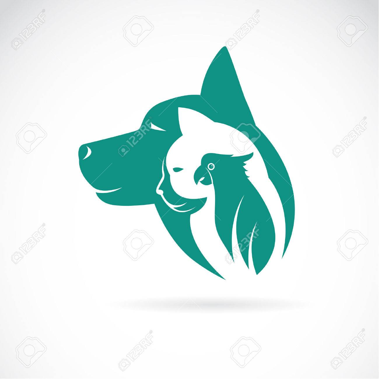 Animal Design Vector Image Of An Dog Cat And Bird On White Background Animal