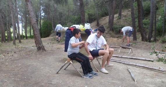 Travaux de bois dans la colline