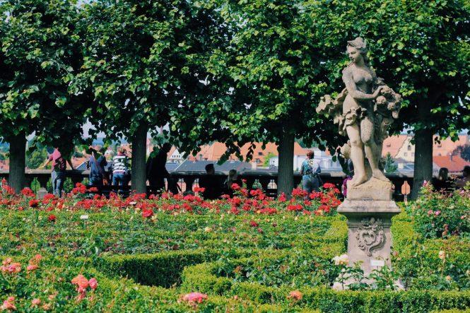 Bamberg - Jardim de rosas