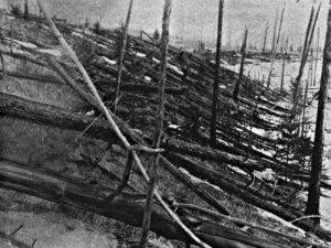Un bosque devastado en los alrededores de la explosión. Imagen de la expedición de Leonid Kulik en 1927. Vía NASA.