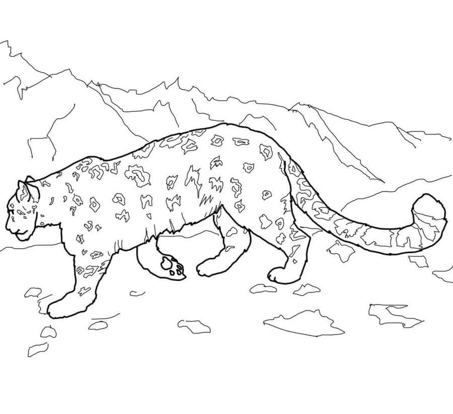 36 leopard zum ausmalen  besten bilder von ausmalbilder