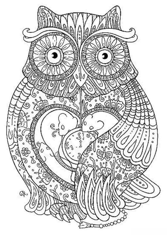Disegni da colorare per adulti: Uccelli stampabile