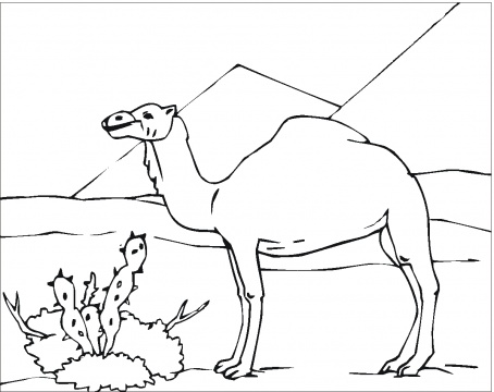 coloring pictures on deserts \u2013 Free Printables