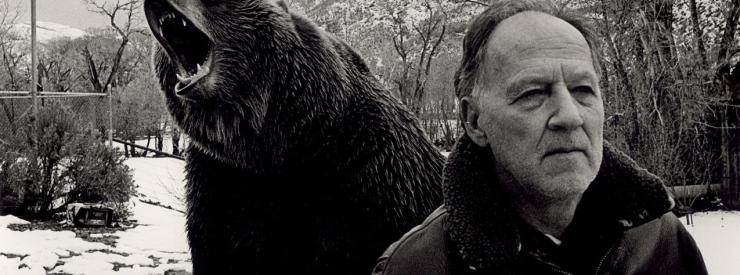 herzog_2005_grizzly_man_018