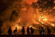 Shqipëria po vuan nga zjarret e shumta