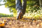 Udhëtimi epik – 15 vjeçari shqiptar në këmbë për 1244 km