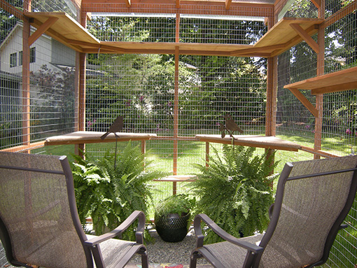 Cat Cage Indoor Catio Spaces Unveils Diy Plans For Homes Gardens To Keep