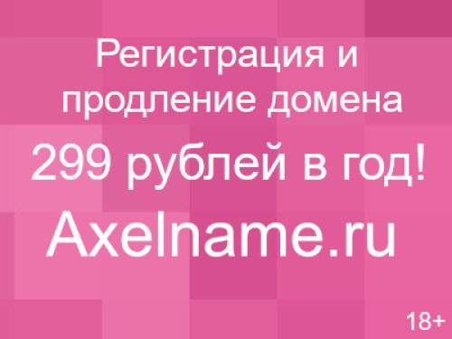 ris_14