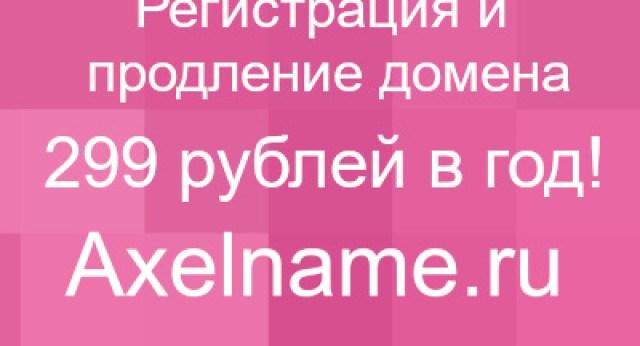 IMG_4343-1024x674
