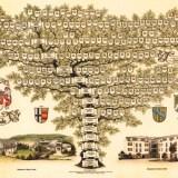 Stammbaum Familie Scheele