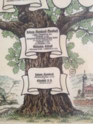 Stammbaum-Daten
