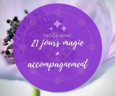 accompagnement-magie-web2