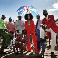 The dandies of Congo