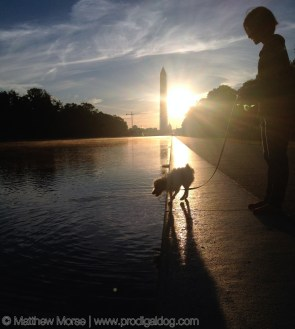 National Mall Sunrise Washington Monument