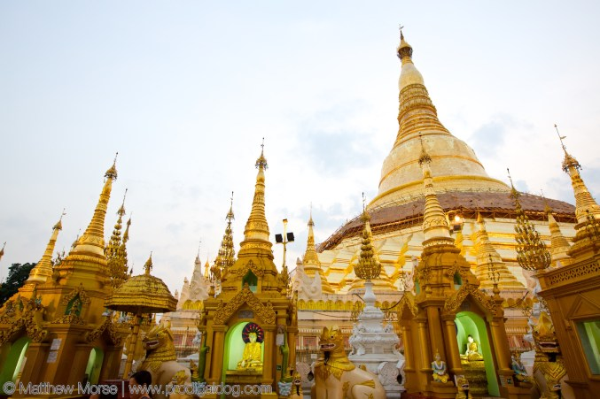 the-prodigal-dog_shwedagon_pagoda5