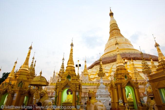 the-prodigal-dog_shwedagon_pagoda5