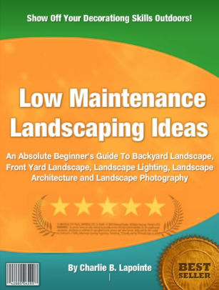 Low Maintenance Landscaping Ideas An Absolute Beginner\u0027s Guide To