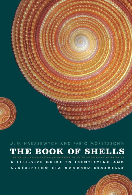 The Book of Shells A Life-Size Guide to Identifying and Classifying