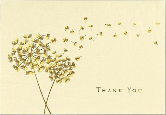 Dandelion Wishes Thank You Notes 9781441326621 Item Barnes