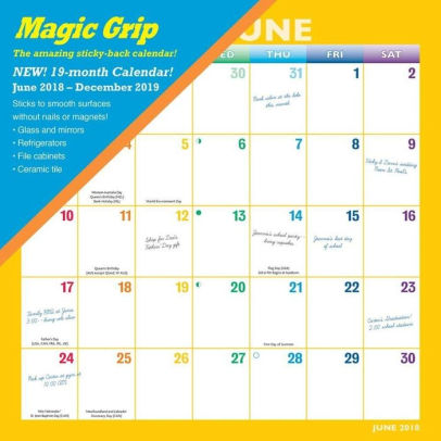 2019 Rainbow Magic Grip Wall Calendar 9781620219102 Item