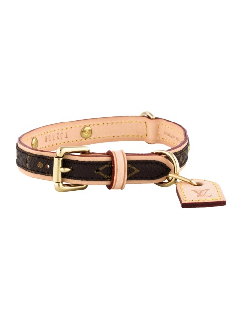 Medium Of Louis Vuitton Dog Collar