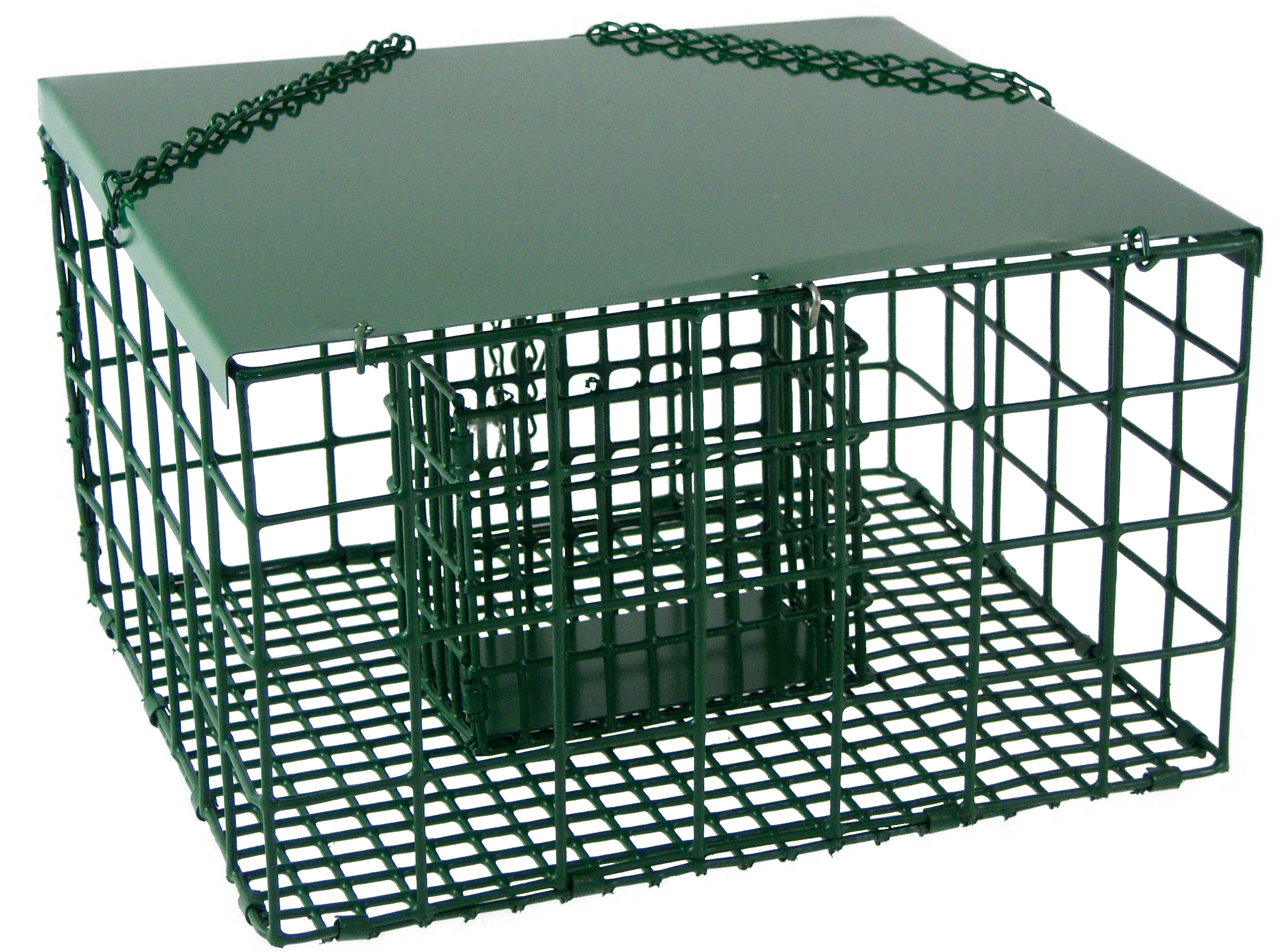 Diy Bird Feeder Cage Songbird Essentials Squirrel Resistant Palace Suet Bird Feeder