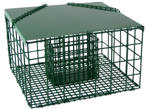 Medium Of Squirrel Proof Suet Feeder