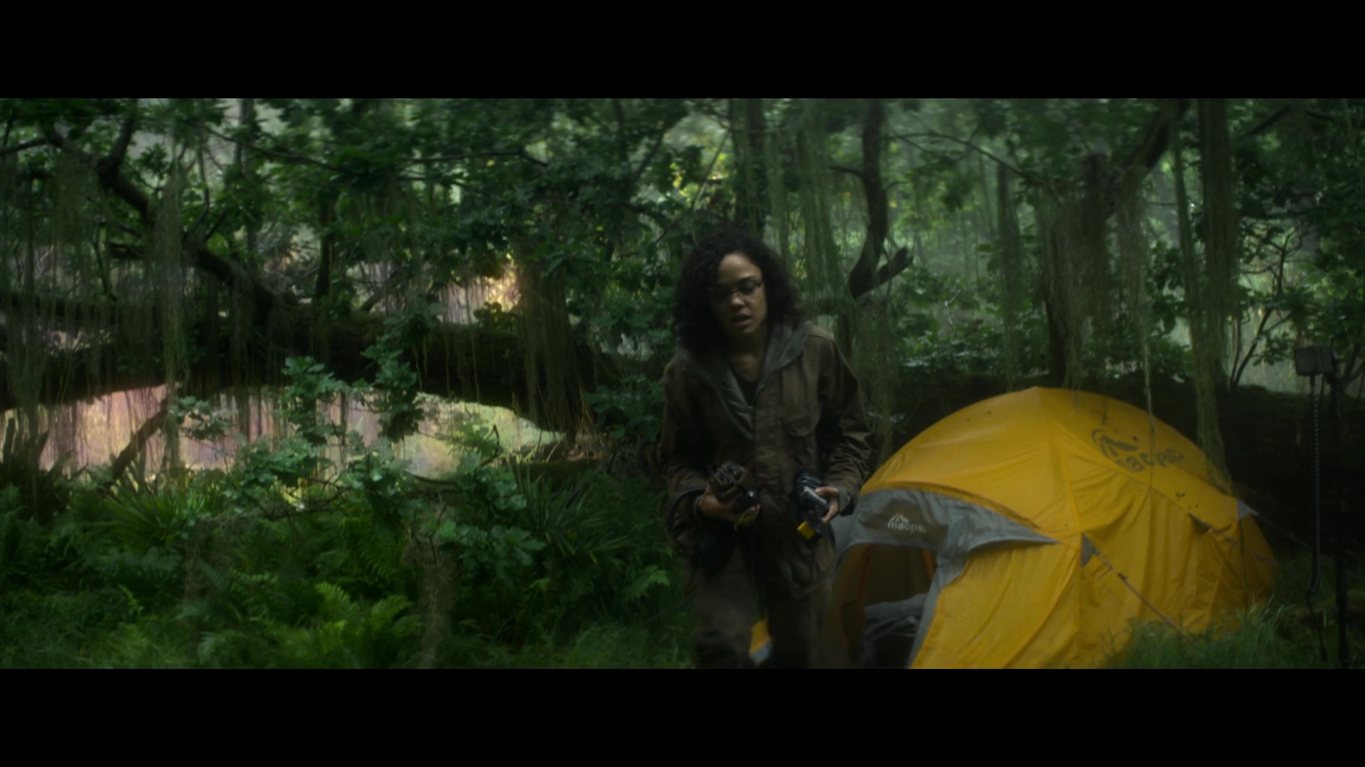 Name Animation Wallpaper Macpac Yellow Tent Used By Tessa Thompson In Annihilation