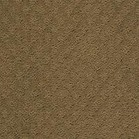 Anso Nylon Carpet Reviews - Carpet Ideas