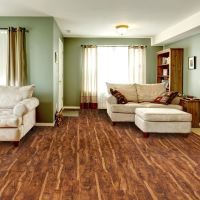 empire carpet buy one get two - Home The Honoroak