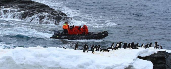 Penguin-viewing in Antarctica