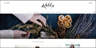Top 10 Best Selling WordPress Themes Developed in 2015