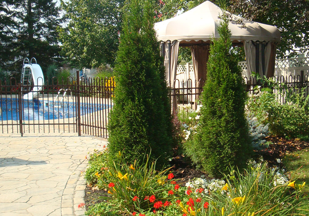 Parterre Jardin Moderne