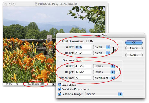 The Reality of Resizing Images in Photoshop - Layers Magazine