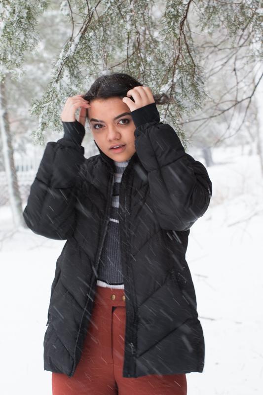 Snow2016FIN-6528