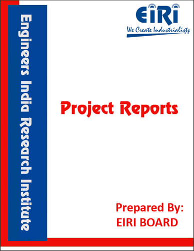 Project Report on AUTOMATIC DETERGENT POWDER MANUFACTURING (NOT CAKE