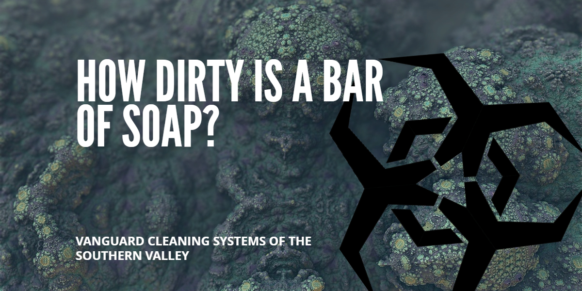 Cleaning Services Questions How Dirty is a Bar of Soap? Fresno CA