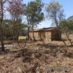 Farm near the river Alva with good access and two buildings - PD0158