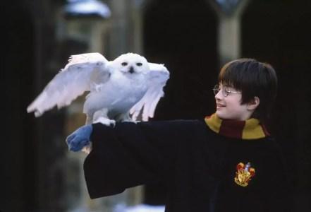 Гарри Поттер и Ф.К. (метод Ильи Франка) Глава 1, часть 7