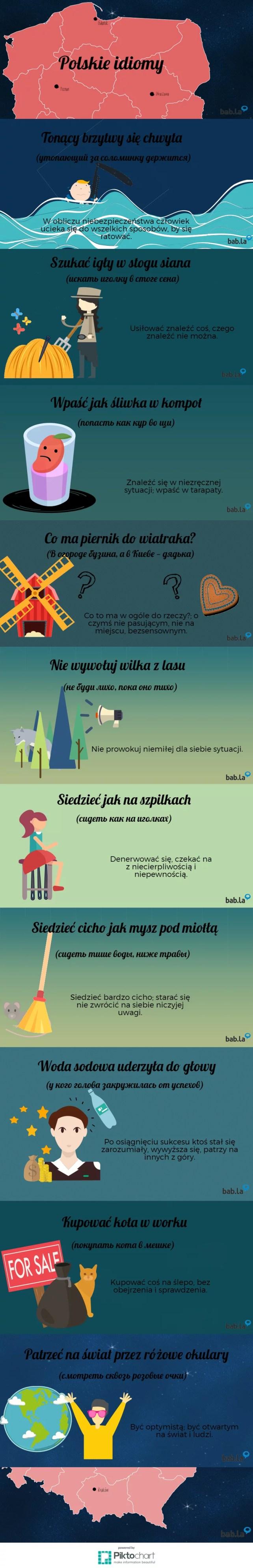polskie idiomy - infografika