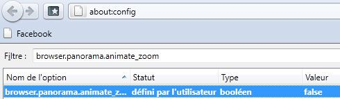 Capture d'écran - Firefox 4, modification de browser.panorama.animate_zoom